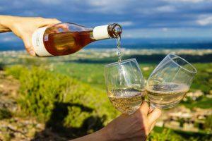 guide to italian white wines mortadella head bosto